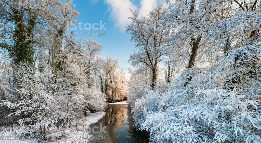 winter sunrise at a river with snow-covered trees stock photo