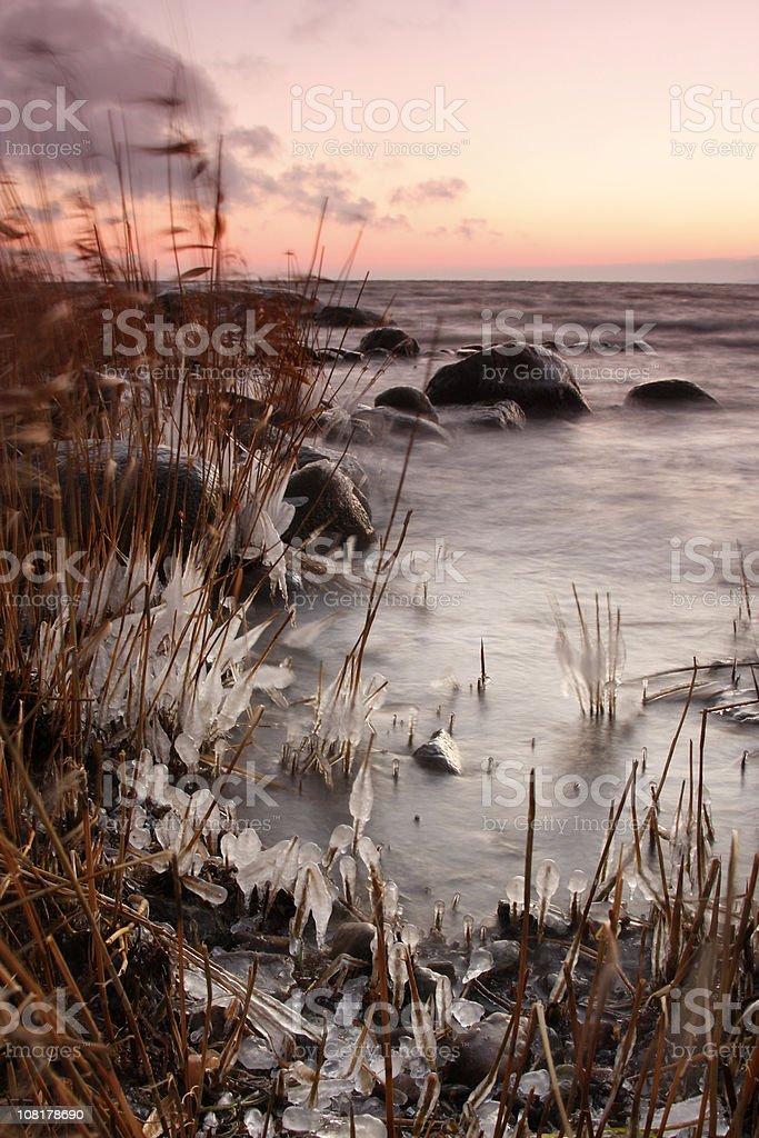 Winter Sunrise at Beach royalty-free stock photo