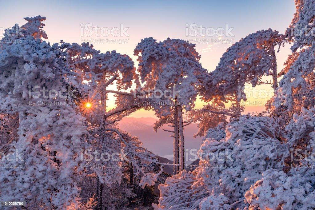 Winter sunrise landscape in Huangshan National park. stock photo