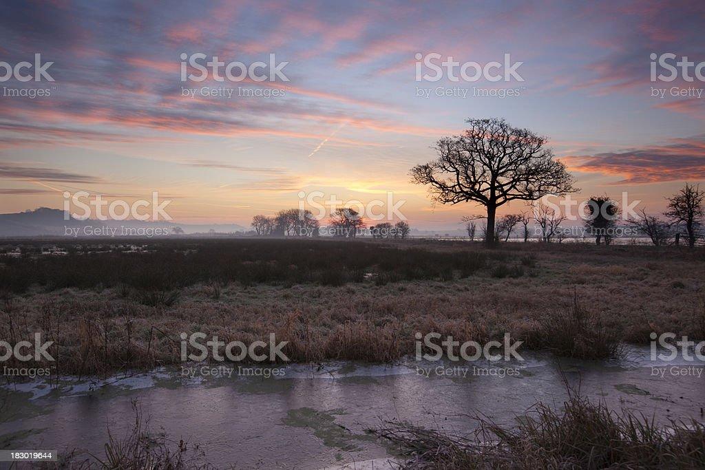 Winter sunrise on the Somerset Levels. stock photo