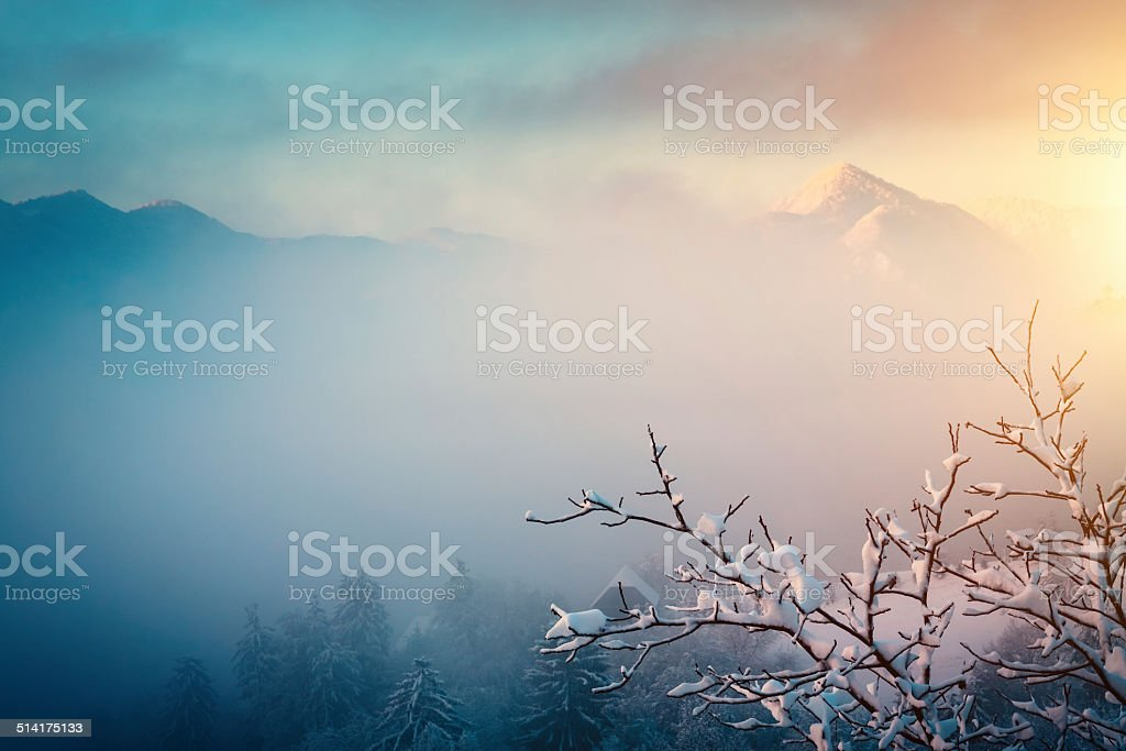 Winter Sunrise stock photo
