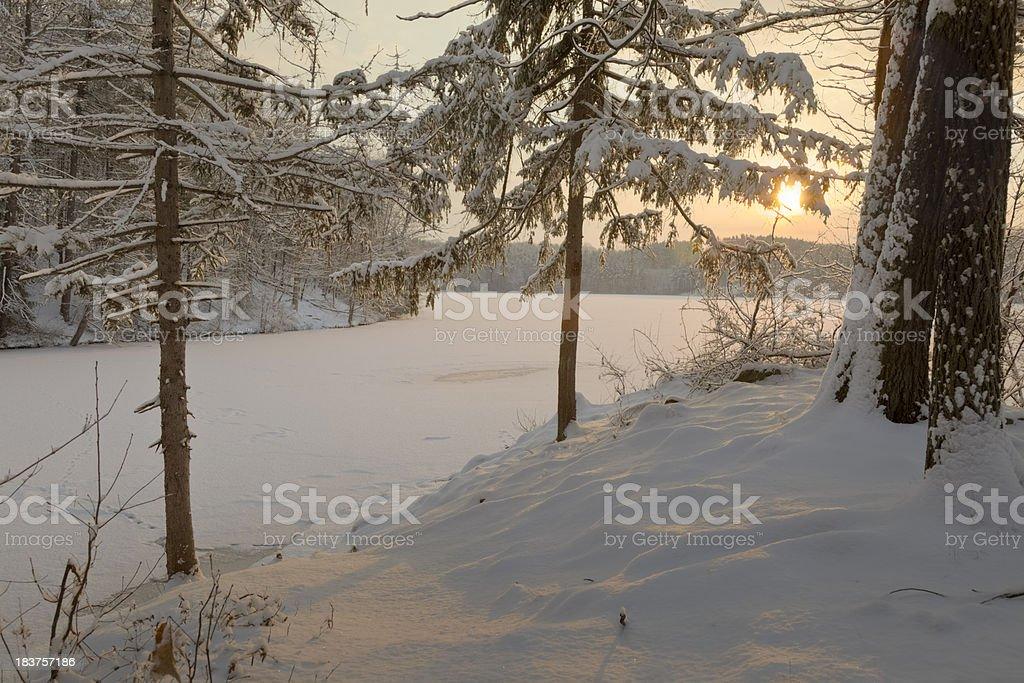 Winter Sunrise Through Mist and Trees Over Frozen Lake stock photo