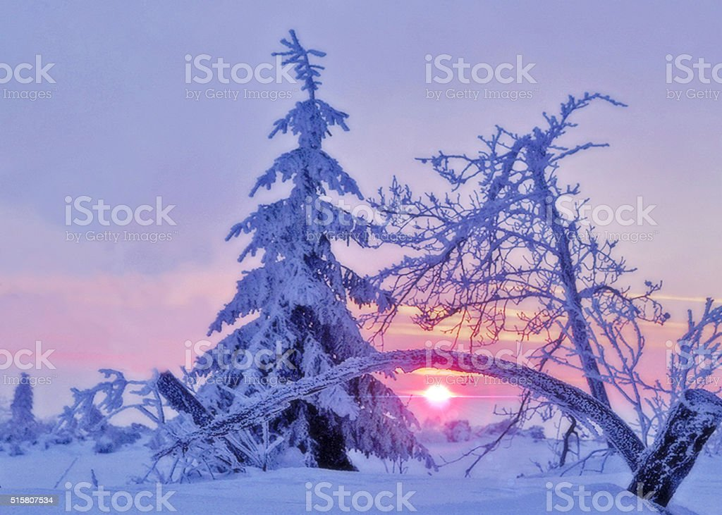 Winter sunset in Black Forest National Park stock photo