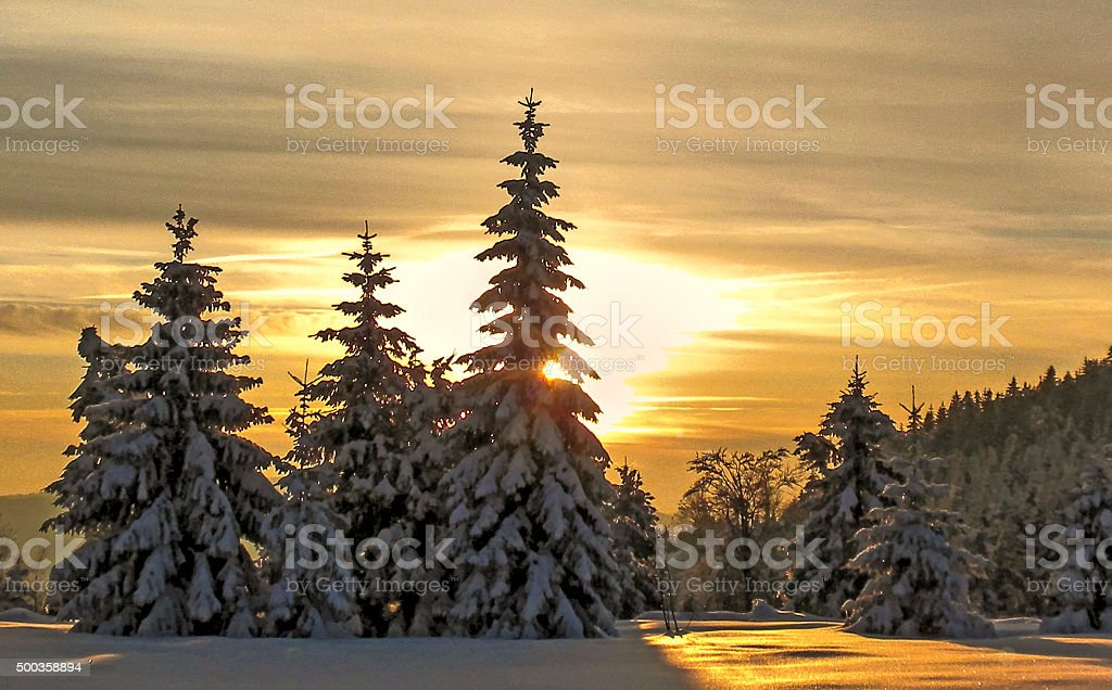winter sunset in the Black Forest stock photo