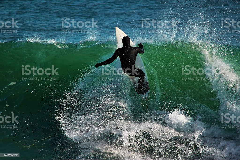 Winter Surfing royalty-free stock photo