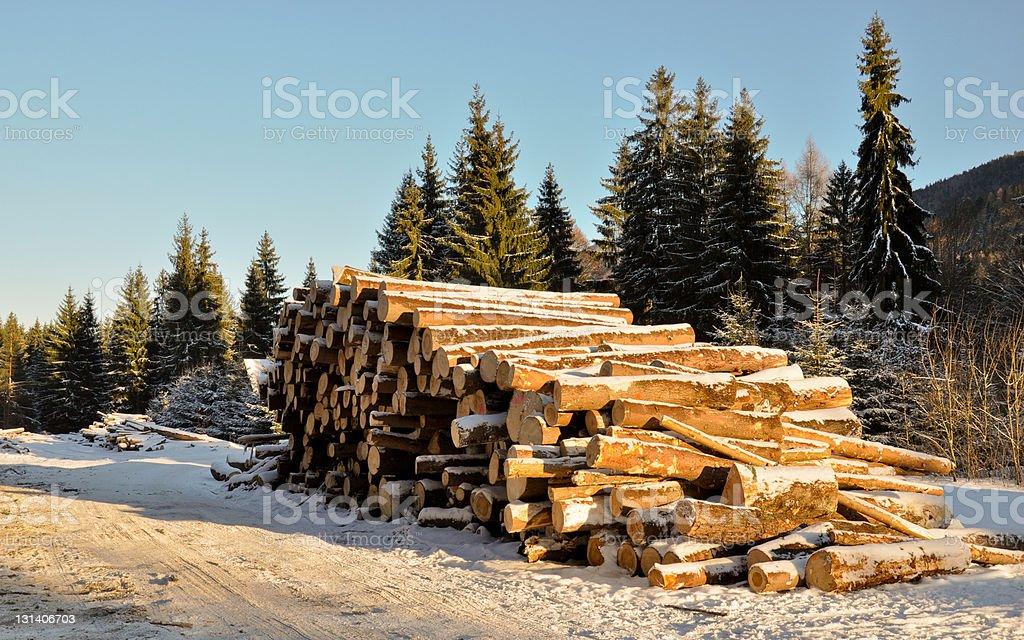 Winter Holz Protokolle vor dem transport von Holz mill Lizenzfreies stock-foto
