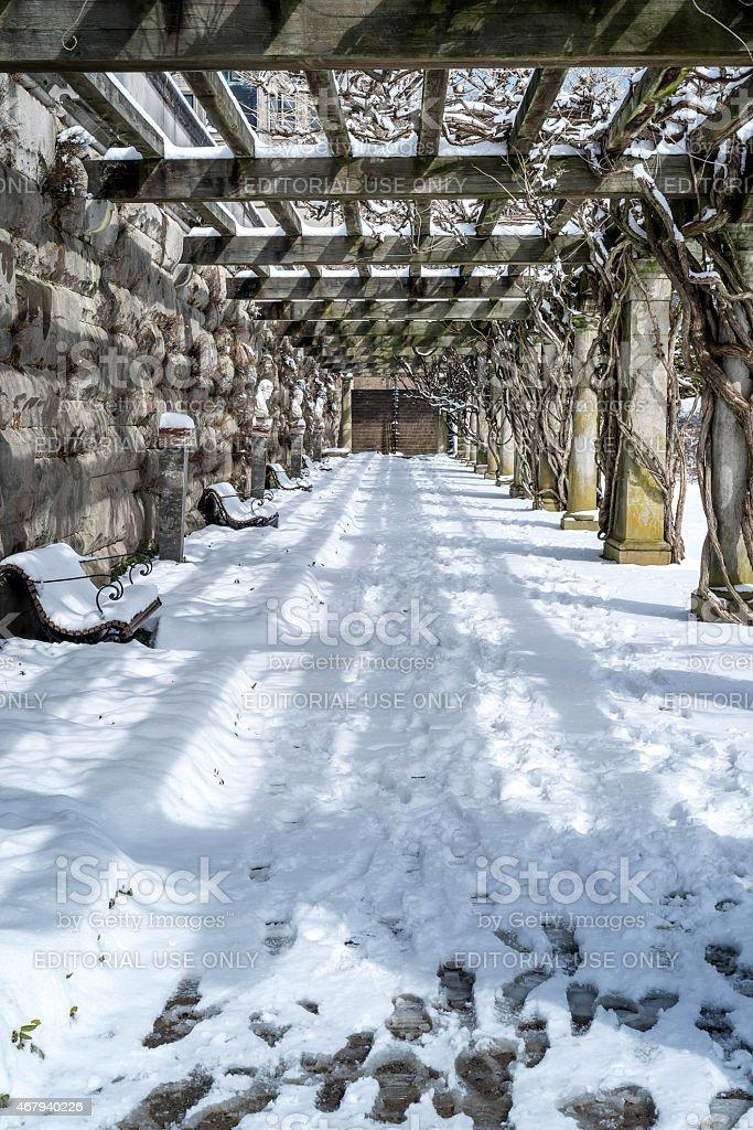 Winter time at Biltmore stock photo