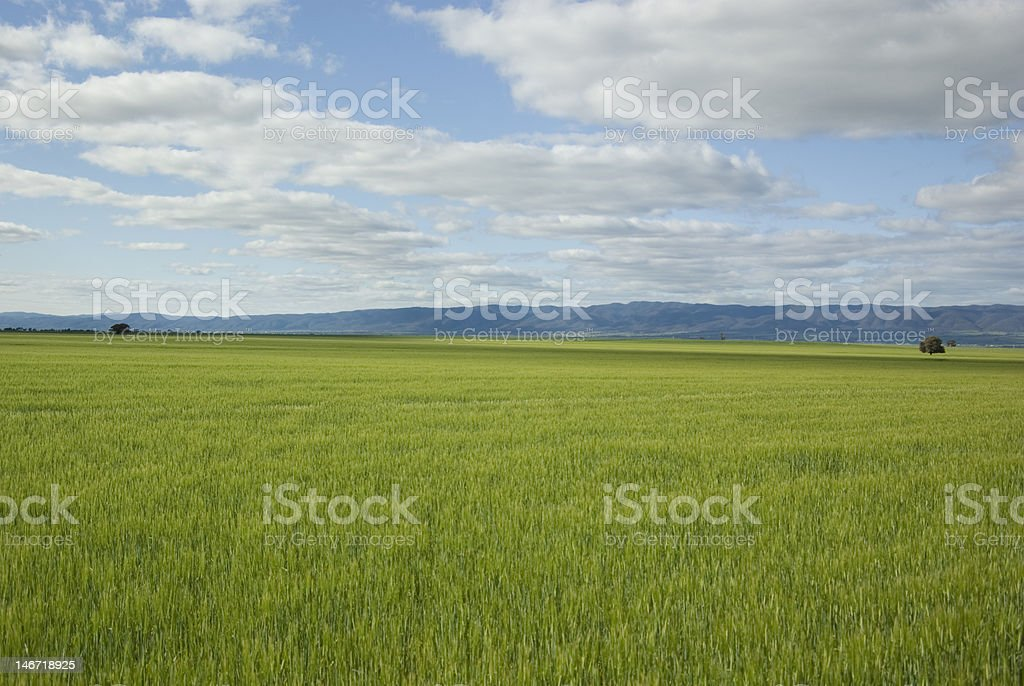 Winter time in the Flinders Ranges stock photo