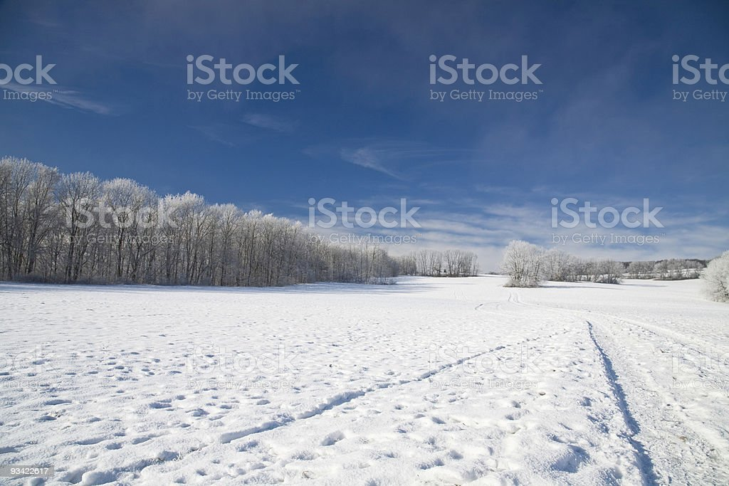 winter times royalty-free stock photo
