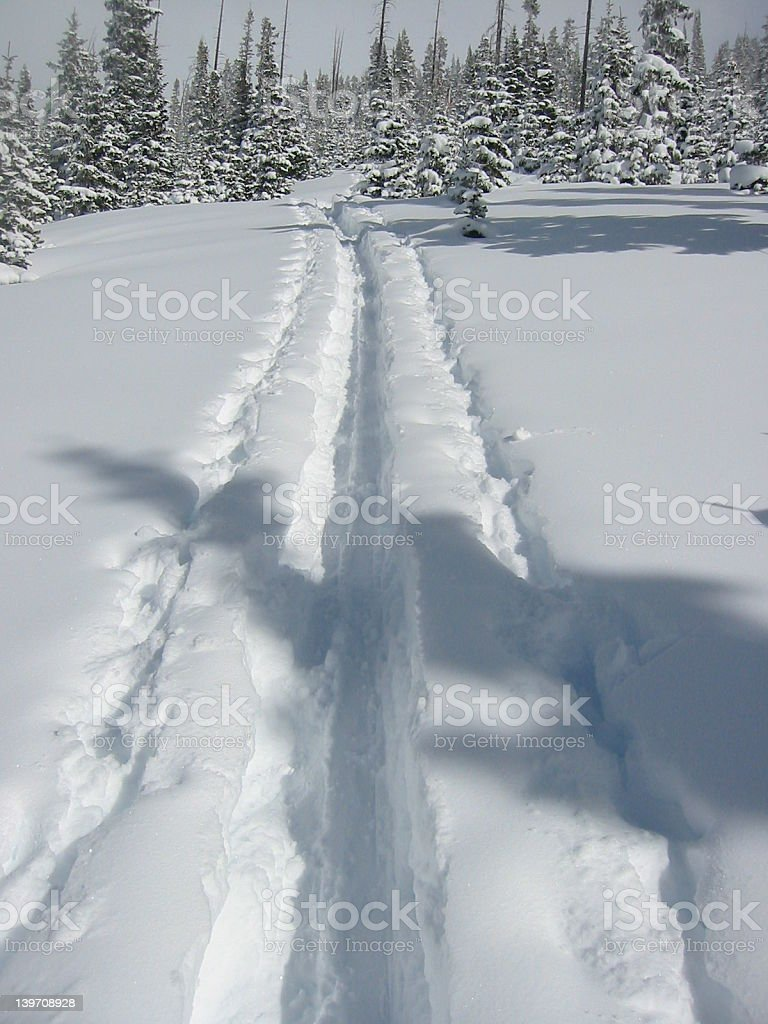 Winter Tracks royalty-free stock photo