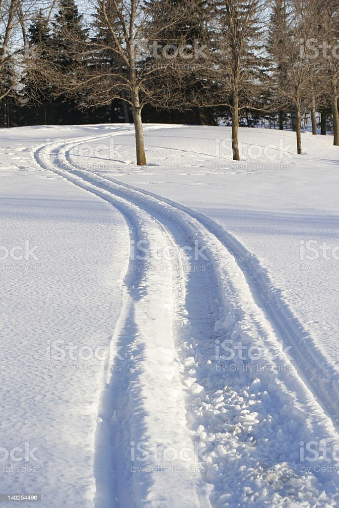 winter trails stock photo