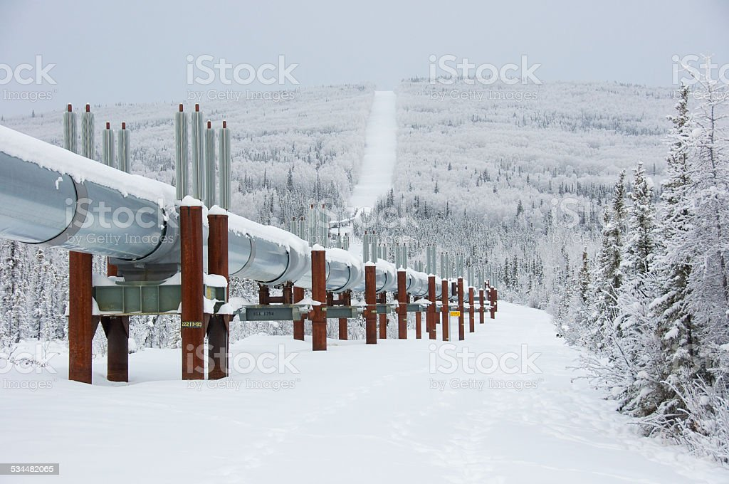 Winter Trans Alaska Pipeline with Snow stock photo