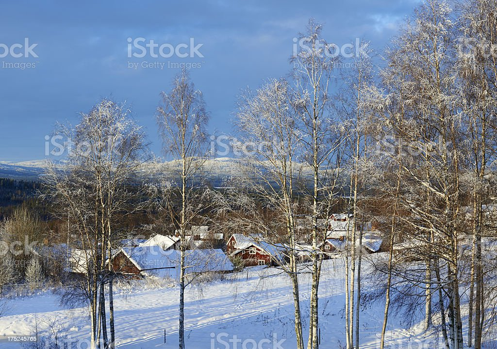 Winter trees and red houses stock photo