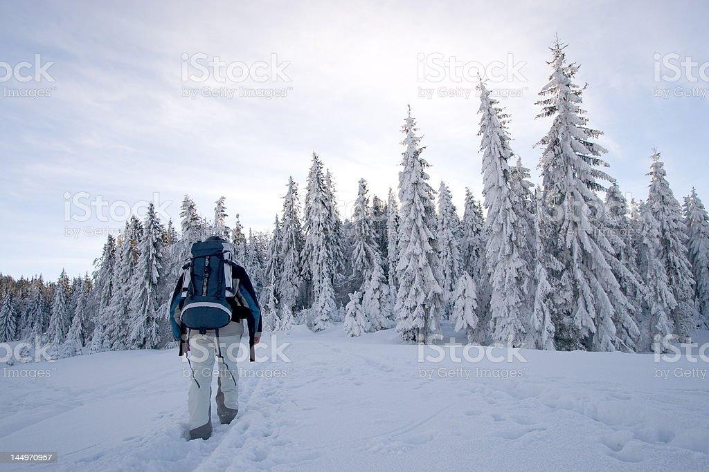 Winter trekking royalty-free stock photo