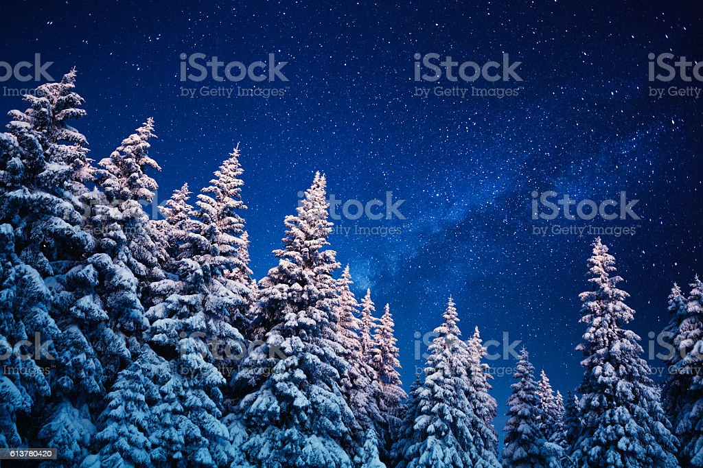 Winter Under The Stars stock photo