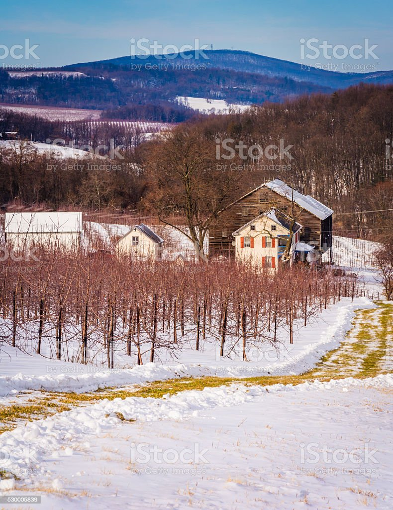 Winter view of a farm and distant mountains stock photo