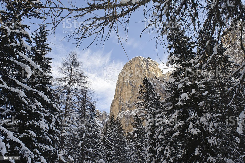 Winter view of the Dolomites from a forest stock photo