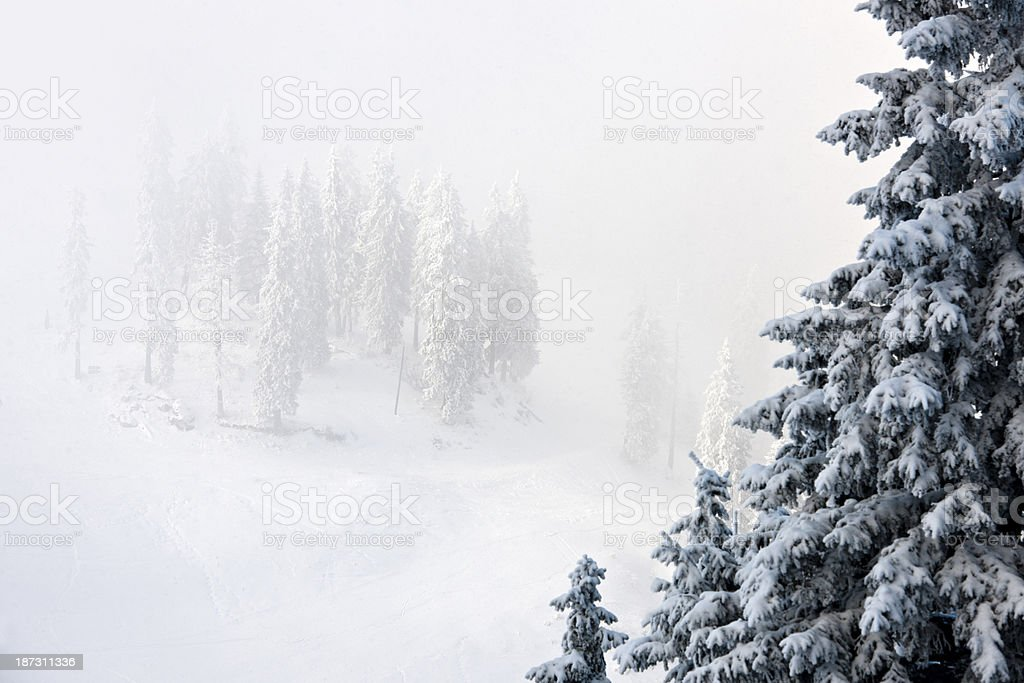 winter view royalty-free stock photo