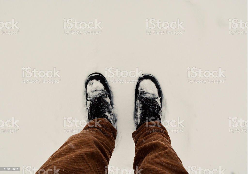 Winter Walk in the Snow stock photo