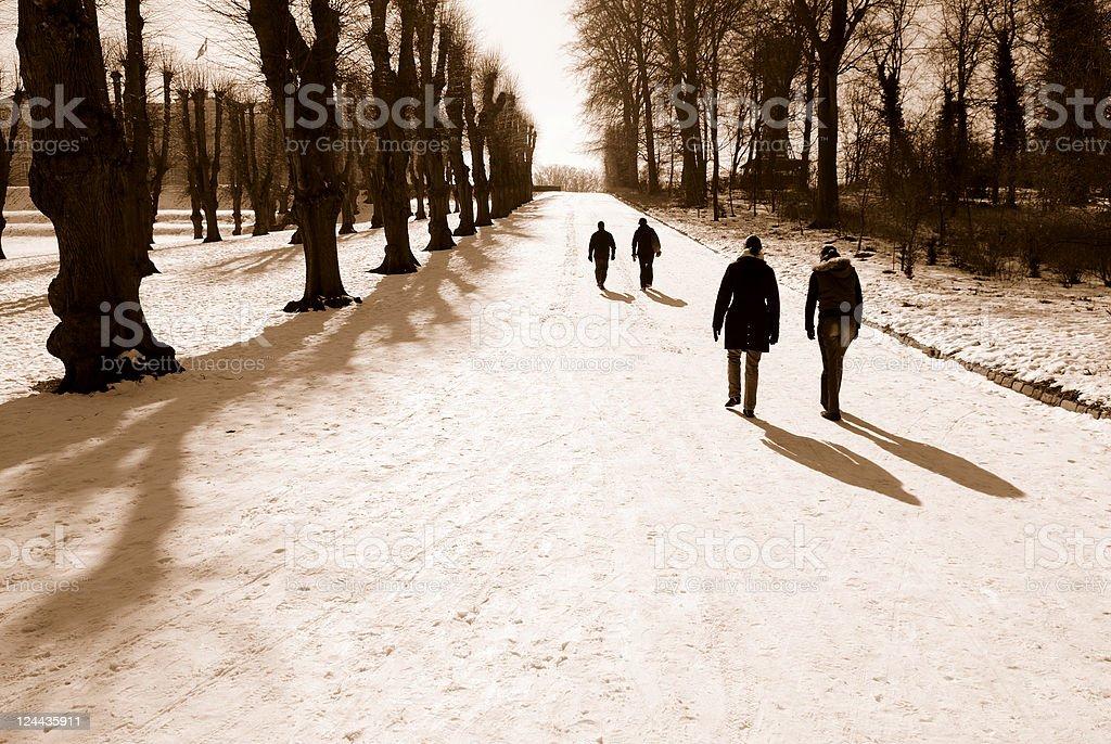 Winter Walk royalty-free stock photo