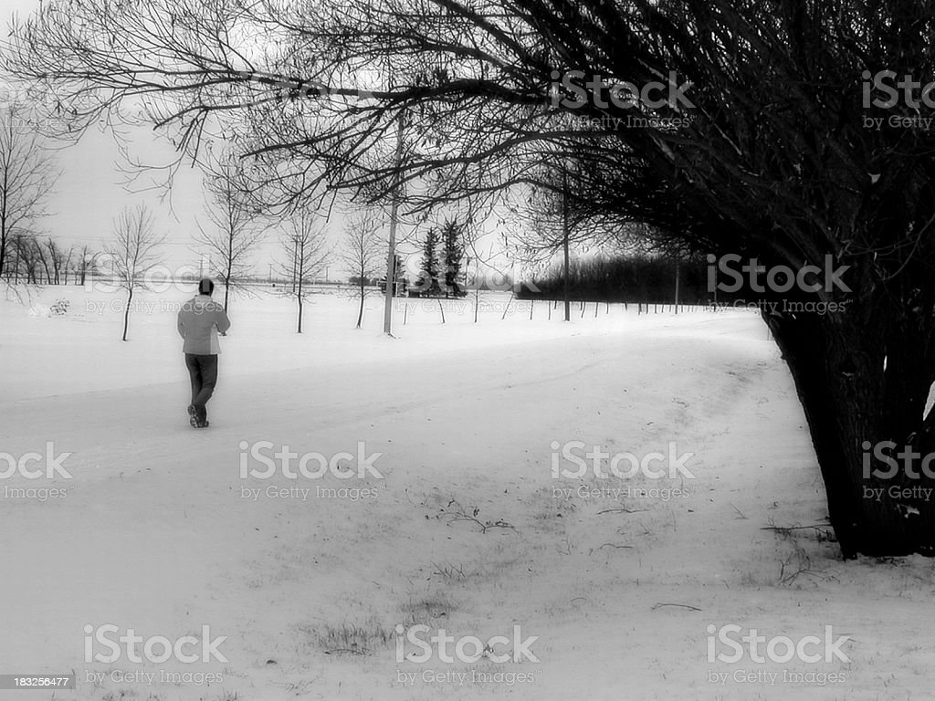 Winter Walk royalty-free stock photo