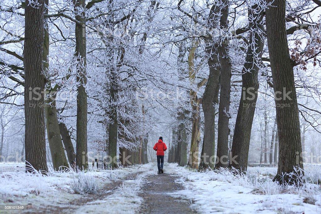 Winter walk stock photo