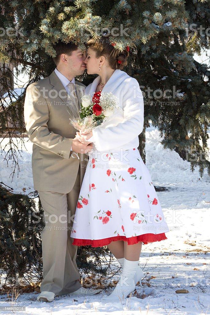 Winter wedding royalty-free stock photo