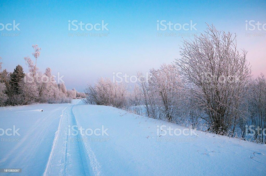 Winter. Western Siberia. stock photo