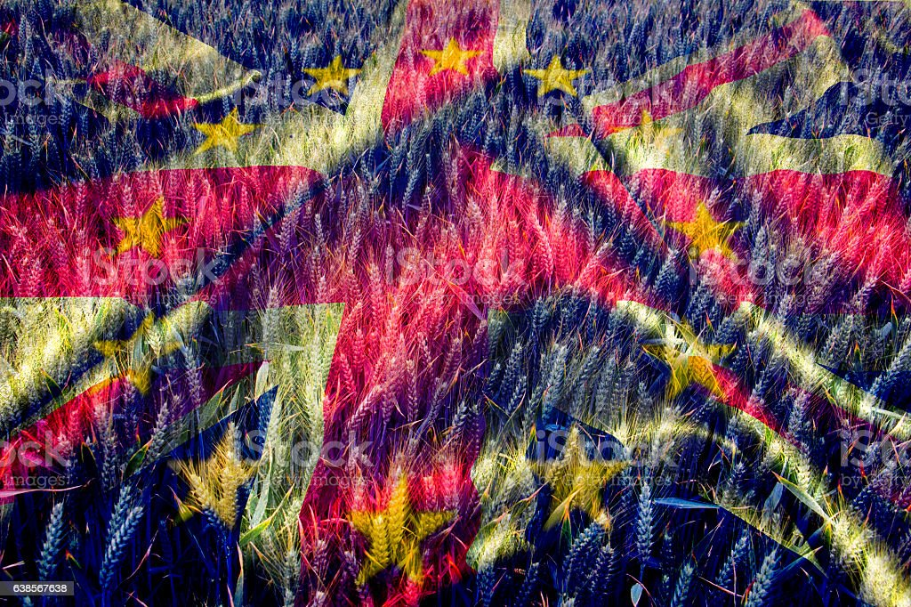 Winter Wheat with UK & EU flag stock photo