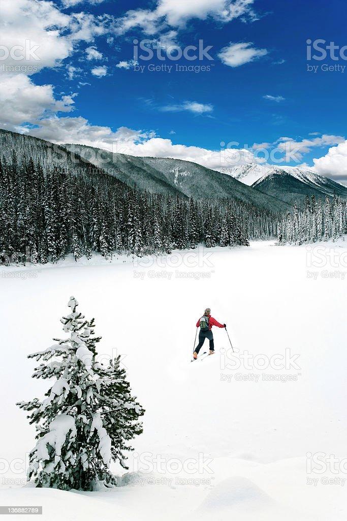 XXL winter wilderness adventure royalty-free stock photo