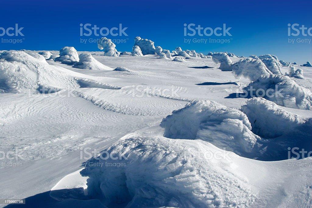 Winter Wilderness II royalty-free stock photo