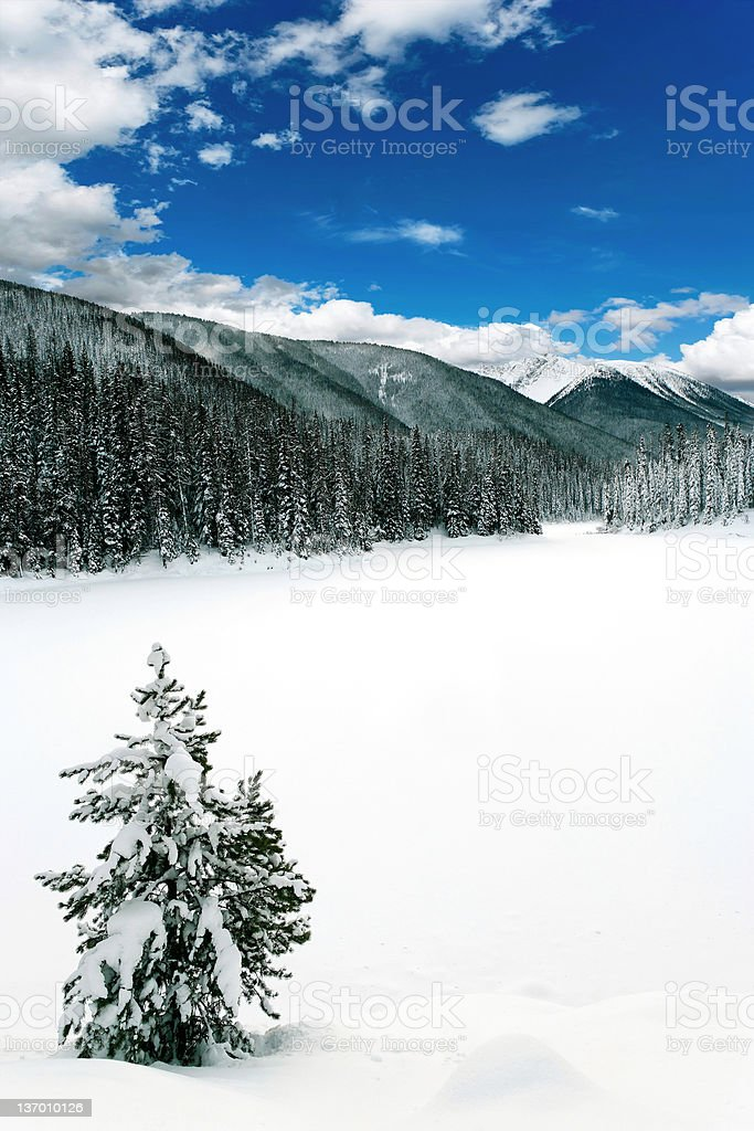 XXL winter wilderness royalty-free stock photo