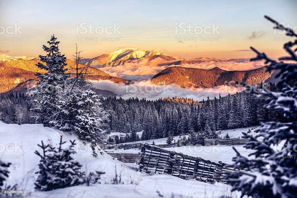Winter Wonderland in Austria stock photo