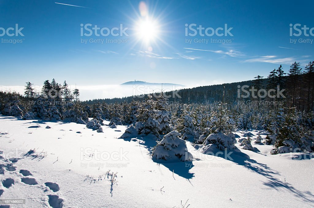 Winter wonderland in the Harz stock photo