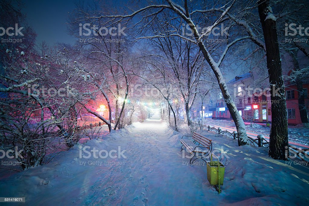 Winter Wonderland, Night Alley Landscape. stock photo