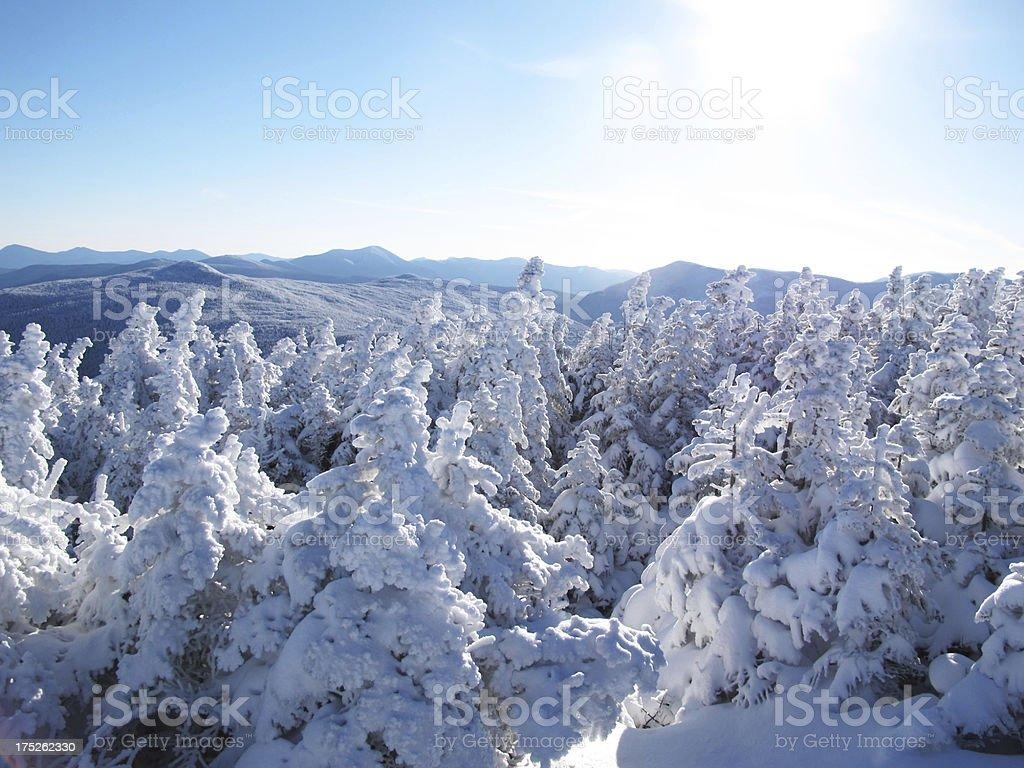 Winter Wonderland on Mt. Pierce stock photo