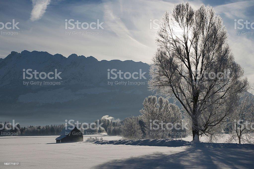 Winter Wonderland (XXXL) royalty-free stock photo