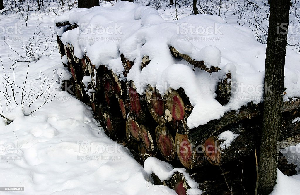 winter wood royalty-free stock photo