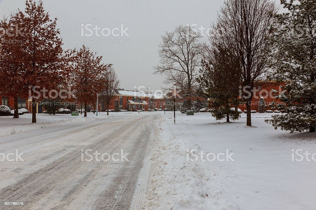 Winter wood road covered with snow apartment stock photo