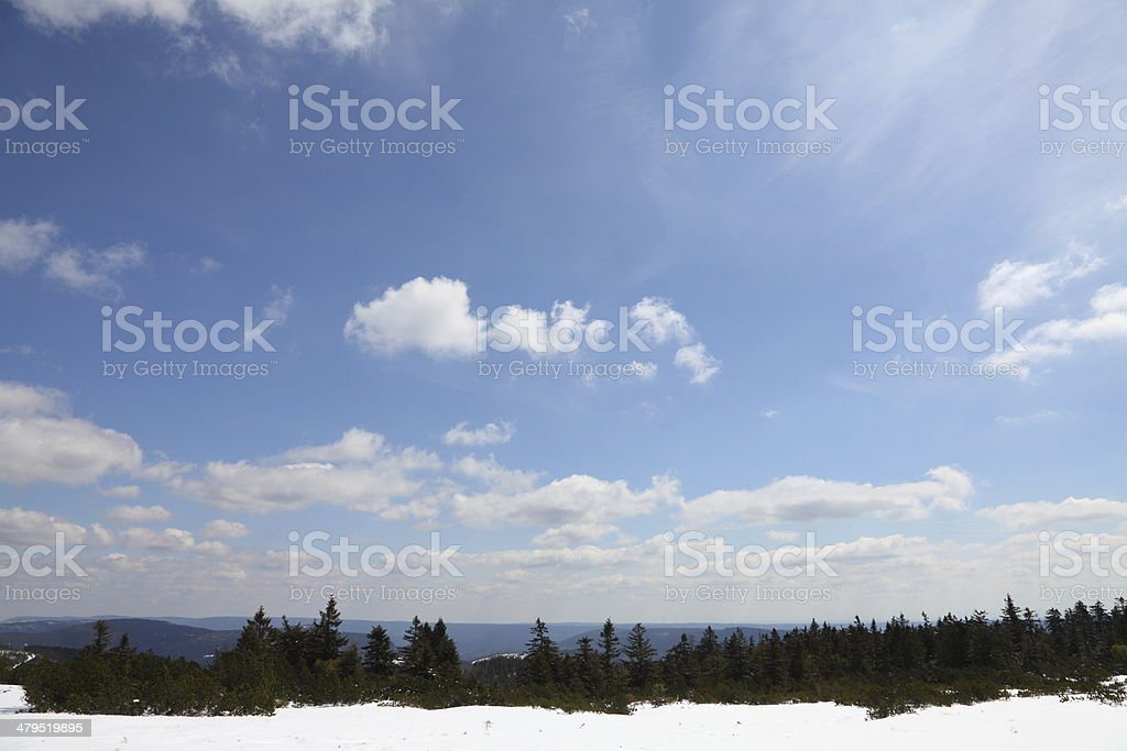 winterday with sun and snow in Black Forest stock photo