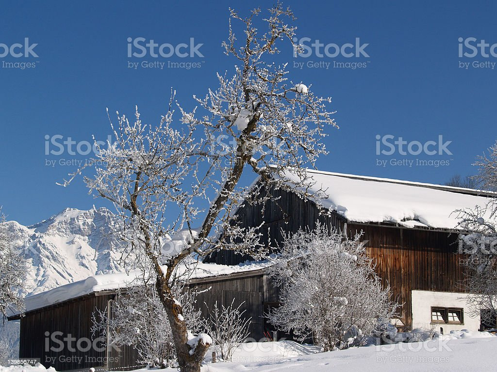 Winterfarm stock photo
