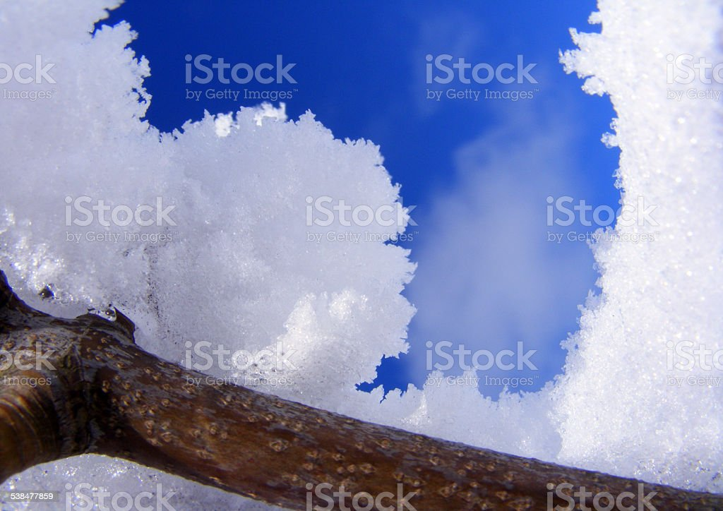Winterland stock photo