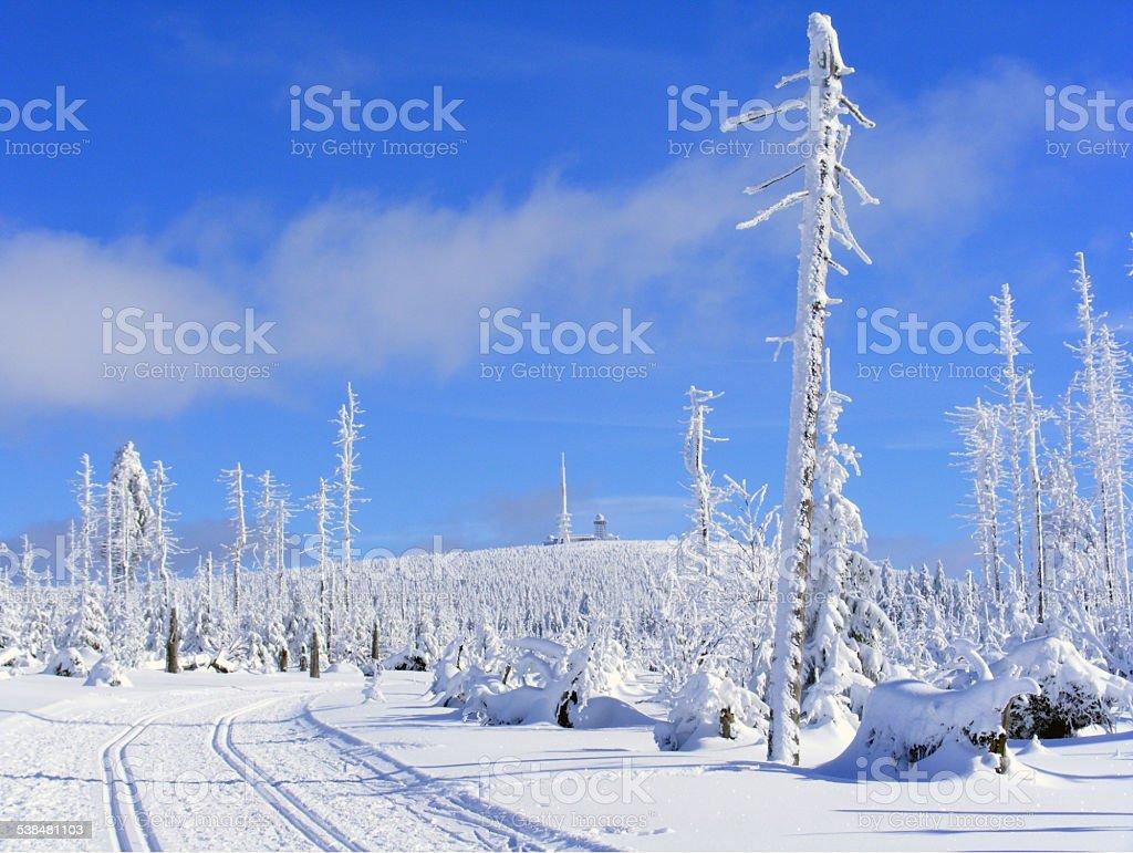 Winterland stock photo