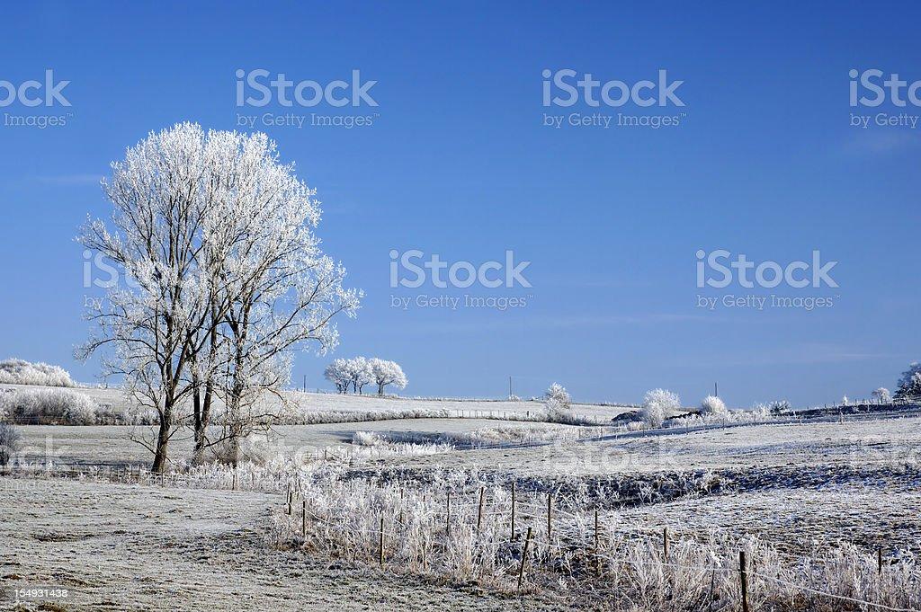Winterlandscapes stock photo