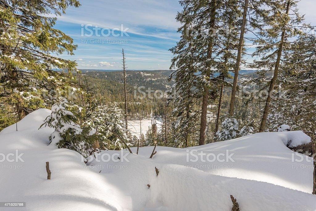 Winterlandschaft photo libre de droits