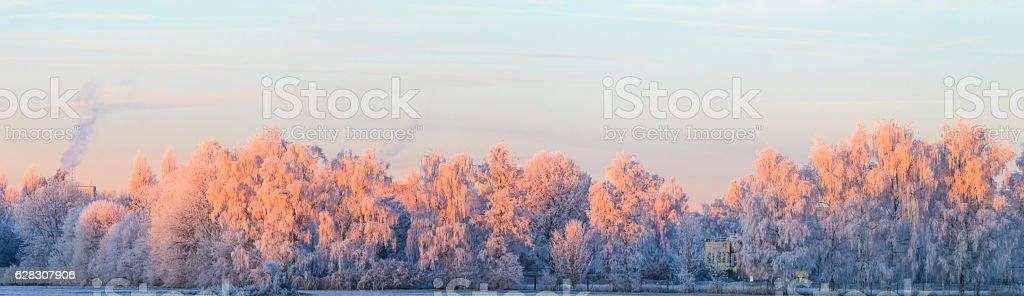 Winterlich verschneite Landschaft stock photo