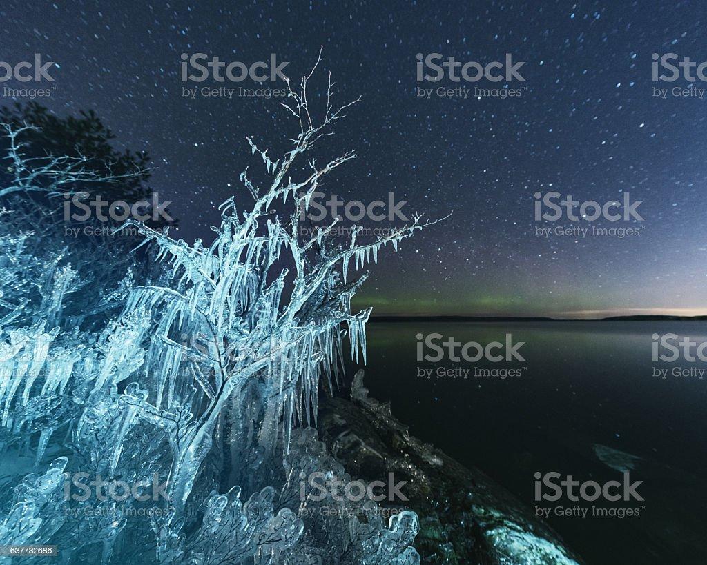 Winter's Grip stock photo