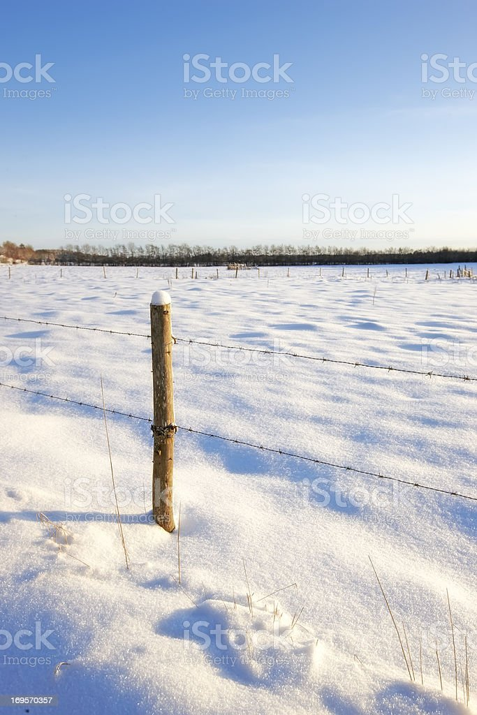 Wintertime landscapes covered in snow  stock photo