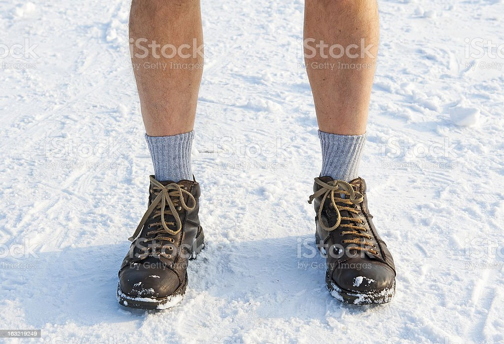 Wintertime royalty-free stock photo