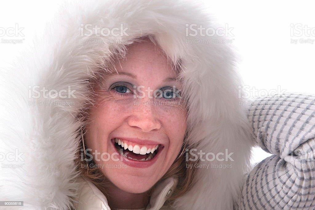 Wintertime. royalty-free stock photo